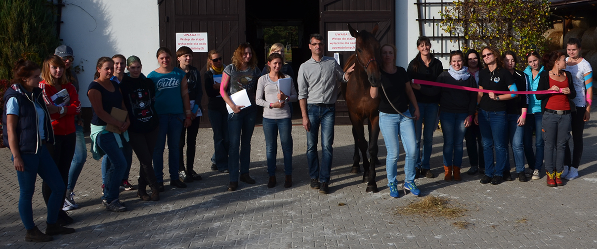 EquiK-Taping participants